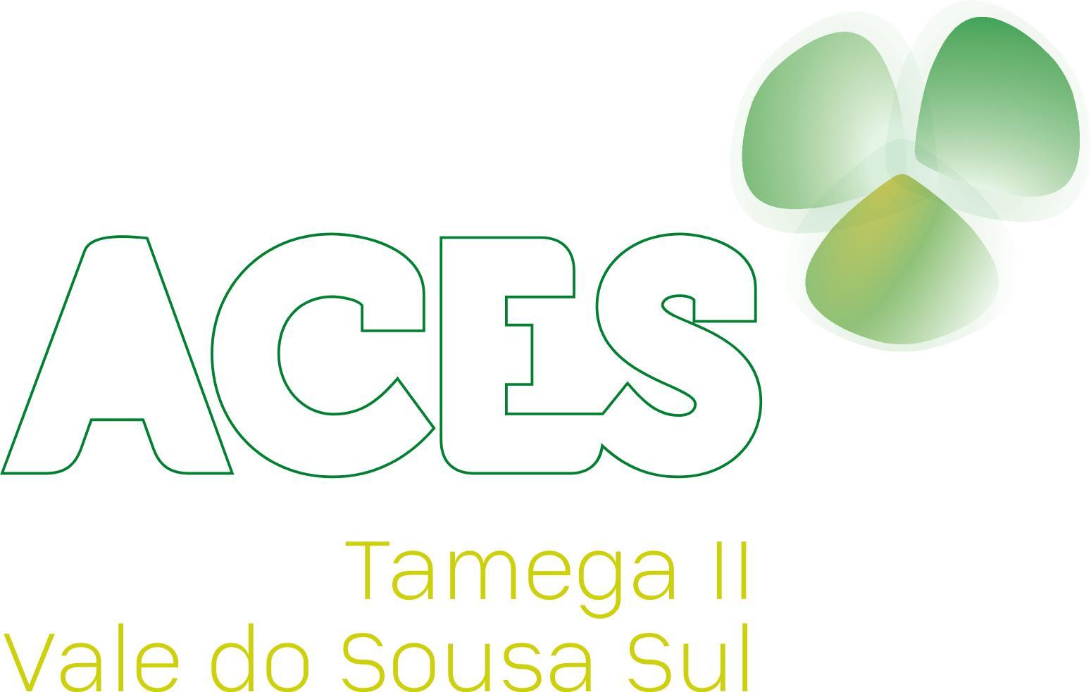 ACES do Tâmega II – Vale do Sousa Sul